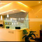 Club Bartop Interior Backlit Acrylic Transparent Stone panel