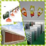 hot sale automatic greenhouse broiler poultry farming equipment