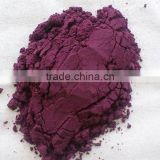 100% Natural Acai extract wholesale, Pure Plant extract Acai berry extract in bulk
