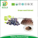 Natural water soluble Grape seed powder/grape seed extract