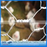 Chicken wire mesh/Hexagonal wire mesh/1/2 inch pvc coated hexagonal wire mesh direct factory