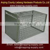 Bird Control Traps 19.7*11*11inch Cages Green Powder Painted Garden Household Manufacture