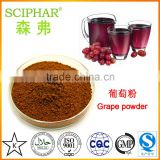 Best quality grape juice powder 100% natural water soluble for soild beverage in hot sale