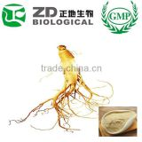 China Supplier Fresh Ginseng Root Ginseng Powder in Herbal Extract for Health Care