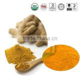 High Quality Natural Powder Bulk curcumin 95% powder