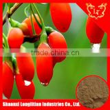 ISO certificate China wolfberry powder extract price , goji berry extract powder ,medlar extract powder
