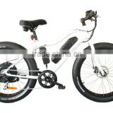 500w electric mountain bike with brushless motor, electric bike conversion kit                                                                                                         Supplier's Choice