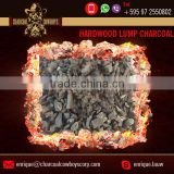 Hardwood Lump Charcoal for BBQ Barbecue 100% Organic - White Label OEM Service Over 3 Hours Burn Time