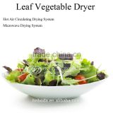 leafy vegetables dryer