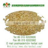 Pine Nuts origin from Inner Mongolia