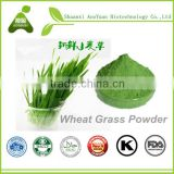 Low Price Organic Wheat Grass Extract Powder