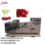 Cherry Stone Removing Machine |Cherry Pitting Machine for Sale|Plum Pit Remover