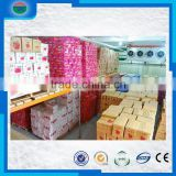 Direct Factory Price latest cold storage/cold room for apple/banana/orange