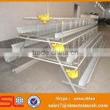 Chicken egg poultry farm / UAE Chicken farm poultry equipment for sale
