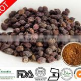 High quality Hawthorn Berry Extract Supplement, Natural Pure Hawthorn Extract Flavonoids 20%
