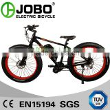 Made in China OEM Electric Fat bike 250W 8Fun Crank/Center Motor ( Or 36V 48V 500W 750W)
