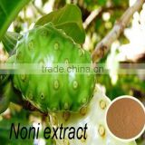 Natural Healthy diet products Noni Extract polysaccharide powder