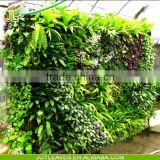 INquiry about wholesale cheap price artificial vertical green wall for shopping mall decoration