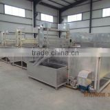 2016 Mung Bean Sprout Cleaning Machine