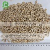 Chinese hulled sunflower seeds kernel confectionery grade newest crop first level quality