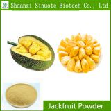 Factory Supply Pure Natural Jackfruit Powder