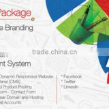 website designing and development, Advance Business Package