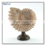 decorative polyresin craft antique sea shell design with wooden imitation base