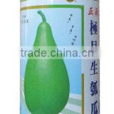 Gourd seeds bulk bottle melon seeds