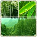 Standardized Extract with Favourable Price Pure Natural 5% Flavones Top Quality Bamboo Leaf Extract