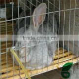 factory price pet rabbit cages