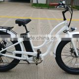 Hot-selling Chinese oem new cheap electric fat tire MTB, big power bike for girls for sale