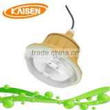 40W IP65 explosion proof light
