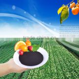 China Supplier High concentrated black seaweed extract Flake/Powder for Foliar Spray Seaweed Extract CAS:84775-78-0