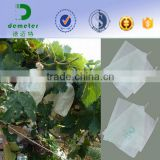 Insect Prevention and Anti-bird Disposable Waterproof Grape Growing Protection Bag of Fruit Breeding