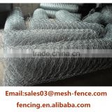 20 Gauge Galvanized and black vinyl coated Poultry Wire Netting / Chicken Wire Mesh / Hexagonal wire fencing