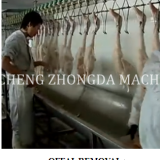 DUCK SLAUGHTER AND ABATTOIR MACHINE