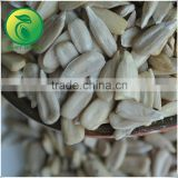 Hulled Sunflower Kernels Bird Food