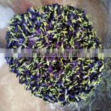 Dried Thai herbal medicine Butterfly Pea