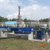 20KW-1MW New Energy Waste Biogas Power Plant/Biomass Cogeneration Plant with Biogas Desulfurizer,Biogas Bag,Biogas Holder