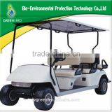Curtis controlle 2 seater golf cart with 36V1000W motor