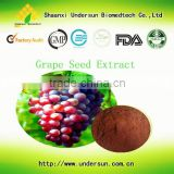 Antioxidant Products Grape seed extract 95% opc No Retail to Individuals for personal use