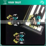 Black Beaded Shinning SequinTurquoise Butterfly Applique Patch