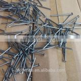 2.8mmX6cm Polished Common Iron Nail,Cheap Bright Common Wire Nail/Iron Nail,Used For Construction,wholesale price,China Hot Sale