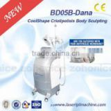 coolshape cryo freeze fat cell slimming machine with 2 handle BD05B