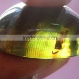 Natural Amber with insects inside