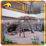 KANO0425 Amazing Animated Fiberglass Dinosaur Animal Fossil For Sale
