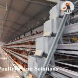 160 birds of A type layer chicken cage equipment for 20000 birds layer farm