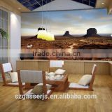 Hot Sales PVC Wallpapers For Hotel , Office ,KTV, Living Room