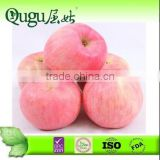 2013 New Crop Huaniu Apple from Gansu, China