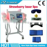 2014 hot sale lipo laser mit 940 nm/free shipping lipo laser / new lipo laser physiotherapy equipment